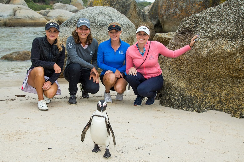 LET Stars Meet the Penguins at Boulders Beach